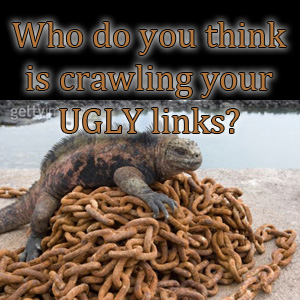 Who do you think is following your ugly links?